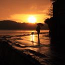 Rainfall at sunset as a lady strolls with lurcher dog and umbrella beside River Tweed on wet Pier Road Berwick-Upon-Tweed, Northumberland
